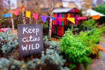 Keep cities wild secret location